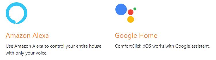 Google and Amazon Voice